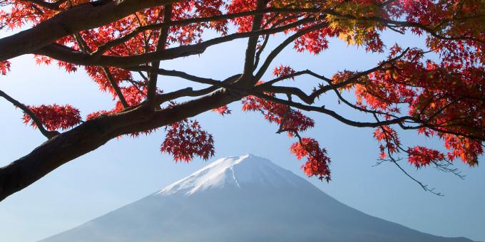 Bellin geht eine strategische Partnerschaft mit dem japanischen Buchhaltungssystemanbieter Diva ein.
