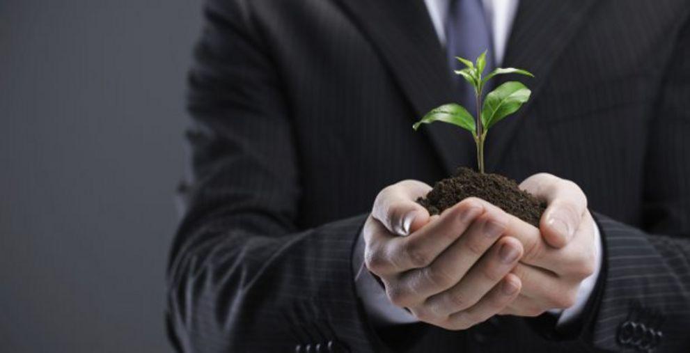 Zartes Pflänzchen: Green Bonds für Corporates