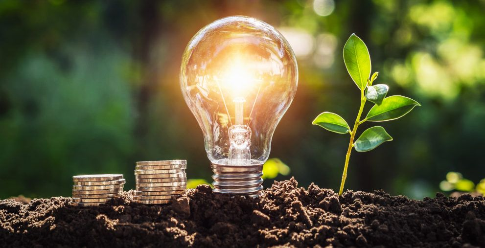 Am 23. März findet die erste Green FINANCE statt. Was Sie auf der Digitalkonferenz für grüne Finanzierung erwartet, können Sie jetzt im Programm nachlesen.