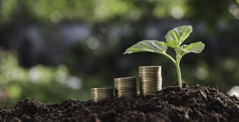 Der Green Schuldscheinmarkt wächst. Fünf Banken wollen nun mit dem Bundesverband Öffentlicher Banken, einen Marktstandard entwickeln.