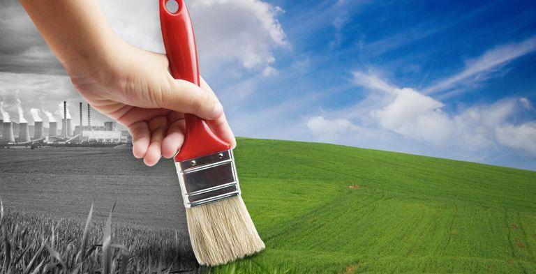 Ist das wirklich grün? Der Assetmanager Aegon sieht eine wachsende Gefahr von Green Washing bei grünen Anleihen.