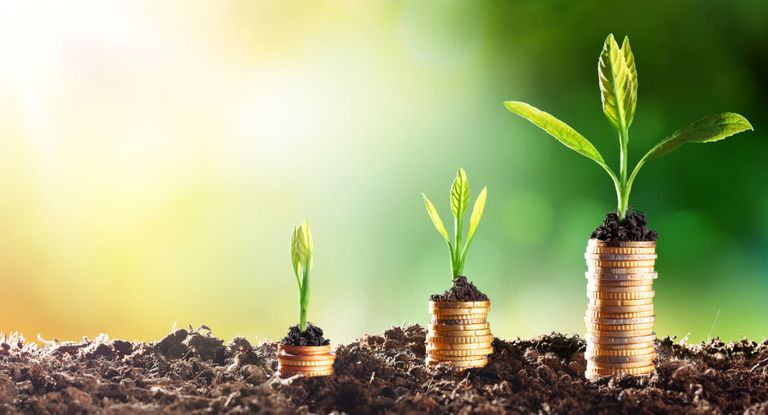 Der Green-Bond-Markt verzeichnete im ersten Halbjahr einen neuen Rekord. Die Prognosen für die nächsten Monate sind ebenfalls sehr positiv.