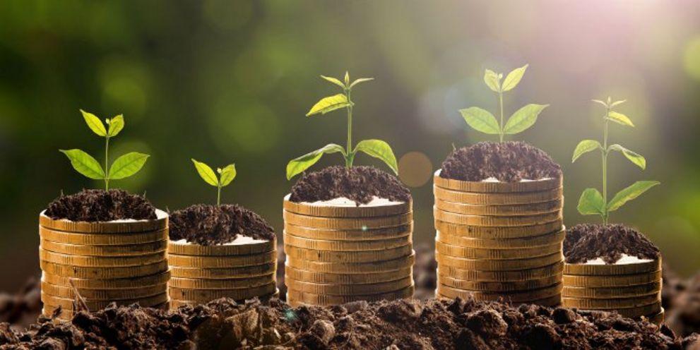 Grüne Finanzierungen sind immer gefragter.